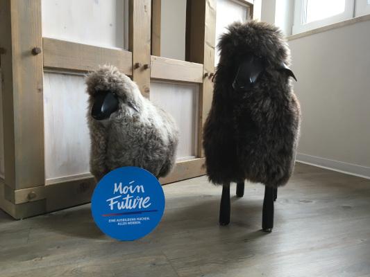 Zwei Holzschafe vor einer Fachwerkwand, davor das blaue Moin Future-LogoZwei Holzschafe vor einer Fachwerkwand, davor das blaue Moin Future-Logo