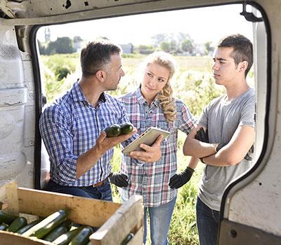 Ein Landwirt zeigt seinen zwei Mitarbeitern in einem Transporter Kisten mit Gurken, Ausbildung in der Region, Niedersachsen, Moin Future
